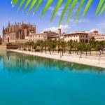 Majorca La seu Cathedral and Almudaina from Palma — Stock Photo