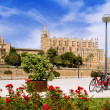 Majorca Cathedral and Almudaina from red flowers garden - Stock Photo