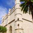 La Lonja monument in Palma de Mallorca from Majorca — Stock Photo #6837850