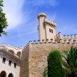 Almudaina palace in Palma de Mallorca from Majorca — Stock Photo #6837960