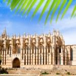 Cathedral of Majorca La seu from Palma de Mallorca — Stock Photo #6837983