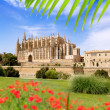 Majorca Cathedral and Almudaina from red flowers garden — Stock Photo #6838084