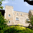 Almudaina palace in Palma de Mallorca from Majorca — Stock Photo