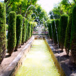 Jardin des rei garden fontaine in Palma de Mallorca - Stock Photo