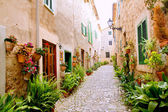 Majorca Valldemossa typical with flower pots in facade — Stockfoto