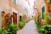 Mallorca-valldemossa-typisch mit blumentöpfe in fassade — Stockfoto