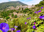 Valldemossa from Majorca view in Tramontana — Stock Photo
