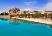 Majorca La seu Cathedral and Almudaina from Palma — Stock Photo