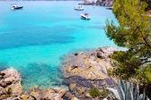 Calvia Cala Fornells turquoise mediterranean in Majorca — Stock Photo