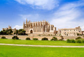 Cathedral of Majorca La seu view from grass garden — Stock Photo