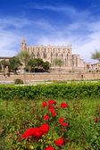 Majorca Cathedral and Almudaina from red flowers garden — Stock Photo