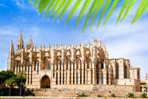 Cathedral of Majorca La seu from Palma de Mallorca — Stockfoto