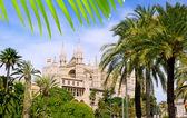 Almudaina and Cathedral of Palma de Mallorca in Majorca — Stock Photo