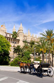 Carriage with horses in Palma de Mallorca cathedral — Stock Photo
