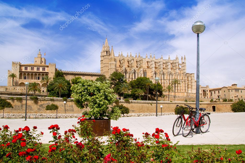 Majorca Cathedral and Almudaina from red flowers garden of  Palma de Mallorca — Stock Photo #6837734
