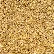 Cereal wheat grain texture pattern — Stockfoto