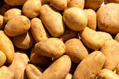 Brown potatoes pattern texture — 图库照片