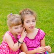 Two sister children girls happy in the grass — Stock Photo