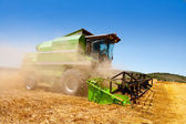 Combine harvester harvesting wheat cereal — Foto de Stock