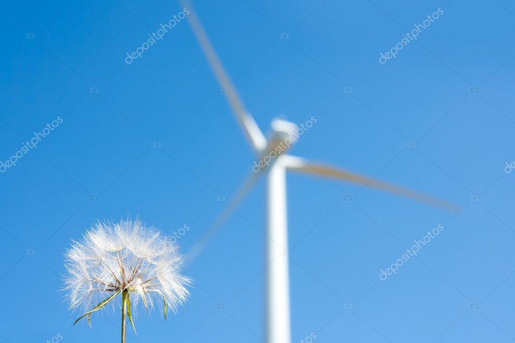 Dandelion with windmill background green energy metaphor — Stock Photo #6946562