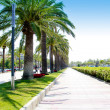 Beach boulevard in Salou with palm trees — Stock Photo #6952280