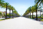 Beach boulevard in Salou with palm trees — Stock Photo