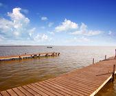 Dia de horizonte lago albufera em valência — Foto Stock