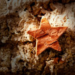 Stock Photo: Bark star shape christmas symbol on cork