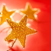 Christmas golden drops star in red — Stock Photo