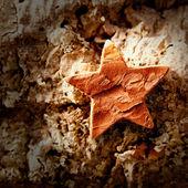 Bark star shape christmas symbol on cork — Stock Photo