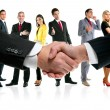 Business handshake and company team — Stok fotoğraf