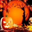 Halloween orange pumpkin on autumn leaves — Stock Photo #7042652
