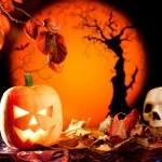 Halloween orange pumpkin on autumn leaves — Stock Photo #7042771