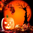 Halloween orange pumpkin on autumn leaves — Stock Photo #7043072