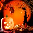 Halloween orange pumpkin on autumn leaves - Stock Photo