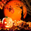 Halloween orange pumpkin on autumn leaves — Stock Photo #7043448