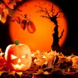Halloween orange pumpkin on autumn leaves — Stock Photo #7043670