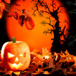 Halloween orange pumpkin on autumn leaves — Stockfoto