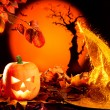 Halloween orange pumpkin on autumn leaves — Stock Photo