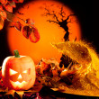 Halloween orange pumpkin on autumn leaves — Stock fotografie