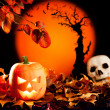 Halloween orange pumpkin on autumn leaves — Stock Photo #7044659