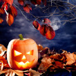 Halloween lantern pumpkin in dark sky clouds — Stock Photo #7045026