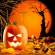 Halloween orange pumpkin on autumn leaves — Stock Photo #7047202