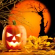 Foto Stock: Halloween orange pumpkin on autumn leaves