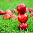 Three red apples stacked in grass field — Stock Photo #7105663
