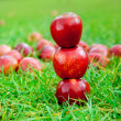 Three red apples stacked in grass field — Stock Photo #7105694