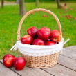Apples in basket on a grass trees field — Foto Stock