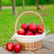 Basket of red apples on wood floor — Stock Photo #7105912