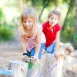 Kid girls playing on trunks in forest nature - Stock Photo