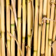 Cane texture used as fence or sunroof - Stock Photo